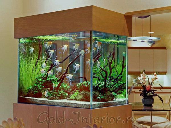 Большой аквариум в интерьере квартиры