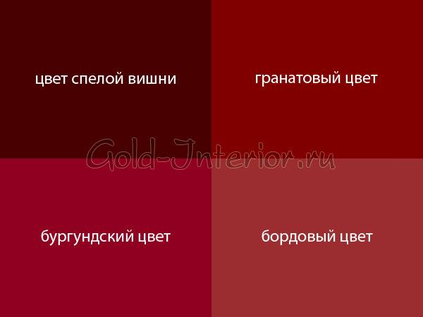 бардовый цвет фото:
