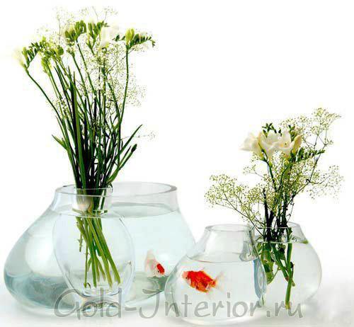 Флора и фауна у вас дома