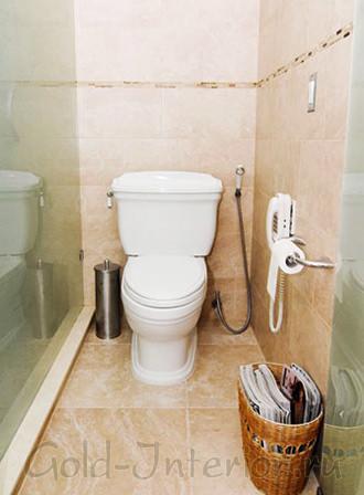 Гигиенический душ вместо виде в интерьере маленького туалета