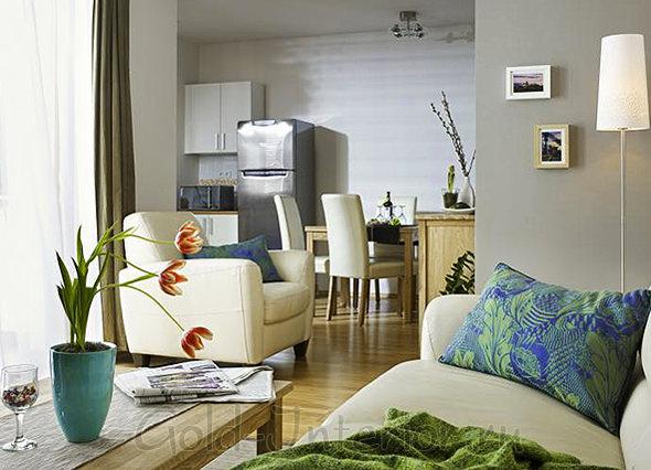 Классическая холодная палитра для интерьера 1-комнатной