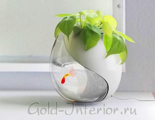 Маленький декоративный аквариум