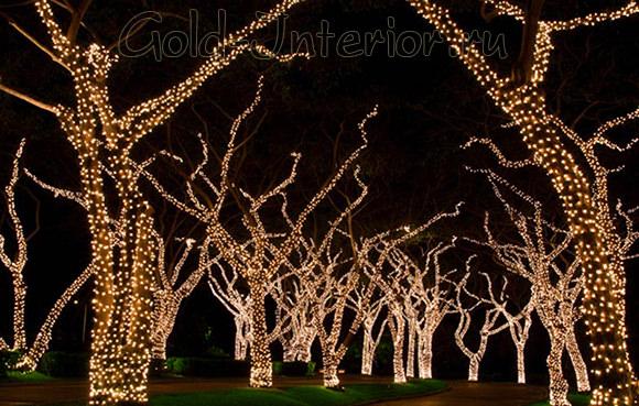 Подсветка деревьев с помощью светодиодных гирлянд
