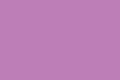Покорная цветовая гамма: лиловый цвет
