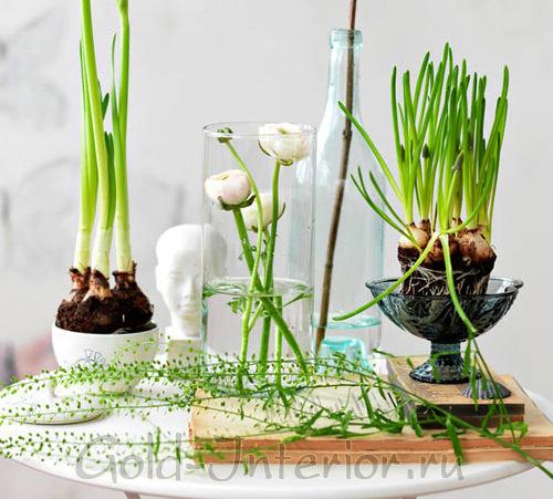 Применение флористики в дизайне интерьера