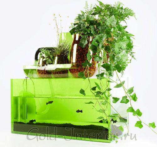 Зелёный растительный и подводный мир