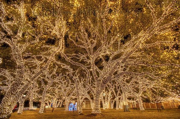 Световая гирлянда-сетка на деревьях