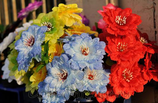 Яркие цветы для интерьера